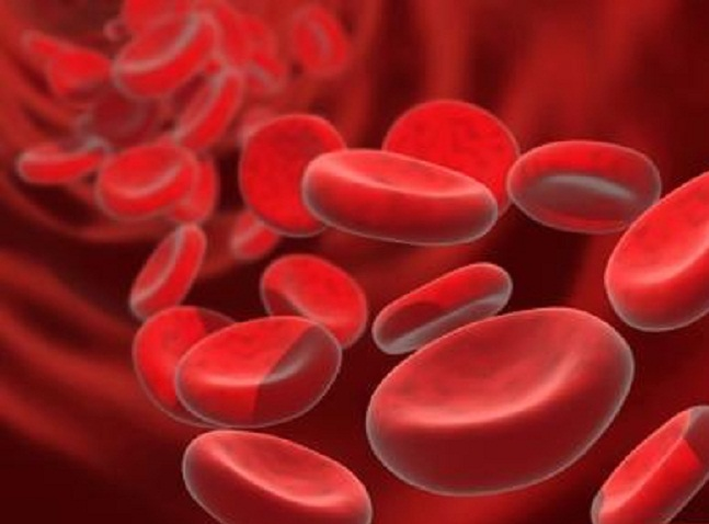 высокий уровень холестерина в крови понизить