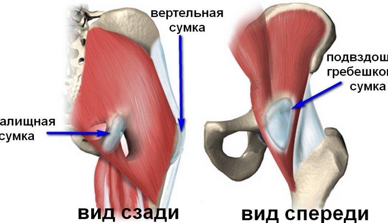 щиколоточный сустав
