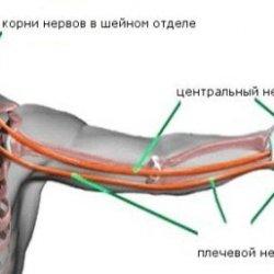 Причины онемения пальцев левой руки