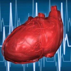 Синдром ранней реполяризации желудочков сердца